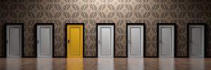 Главные особенности дверей из экошпона
